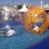 Aquaballs Vermietung Wasserfun Sommer Sonne Action