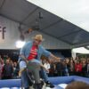 Bayerisches Bullenreiten Bull Riding blau weiss Oktoberfest