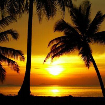 Beachparty Dekovorhang Sunset 1 Leinwand Vermietung