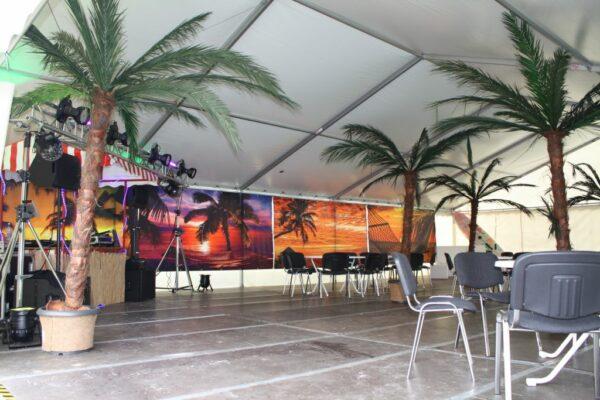 Deko Palme Staffage Raumgestaltung Feierlichkeiten Verpachtung
