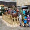 Rentier mit Schlitten Dekoration Weihnachtsmarkt Fotoshooting Fotohintergrund