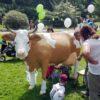 Wettmelken mieten bayrisch lebensgroße Kuhattrappe